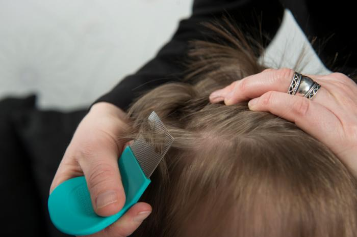 checking hair with nit comb