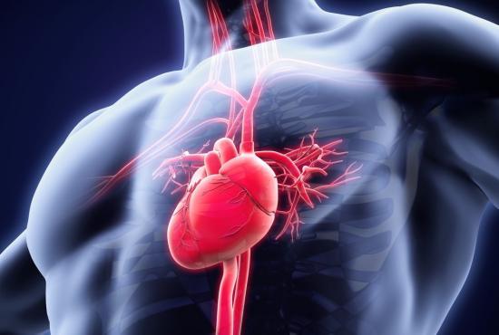 Tachycardia: Causes, symptoms, diagnosis, and treatments