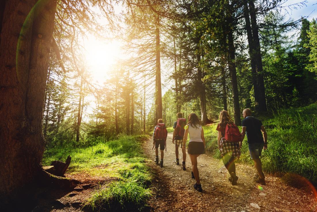 family walking in wood