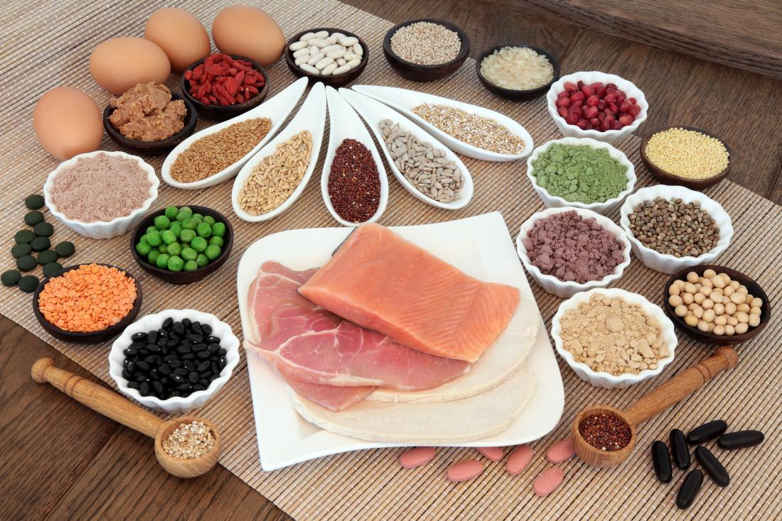 why should you have protein in your diet