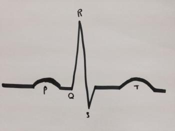 Cardiology: What it is, when it is needed, and what to expect
