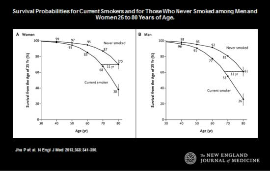 Survival Probabilities for Current Smokers and for Those Who Never Smoked among Men and Women 25 to 80 Years of Age.