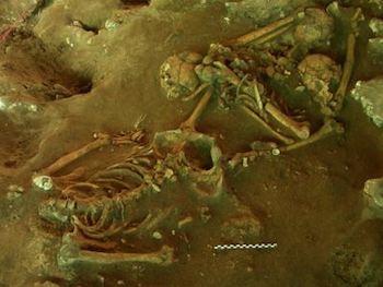 Lapita Burials at Teuoma Site