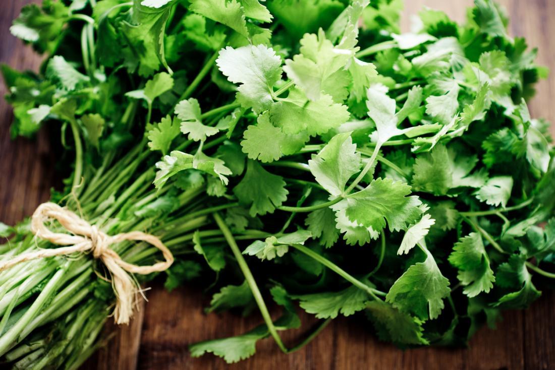 Cilantro (coriander): Benefits, nutrition, dietary tips, and