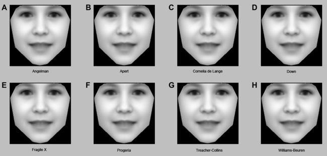 Algorithm faces