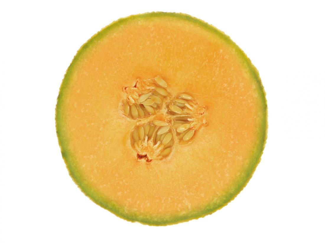 Cantaloupe cross section