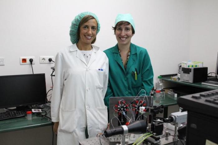 Investigators, University of Granada