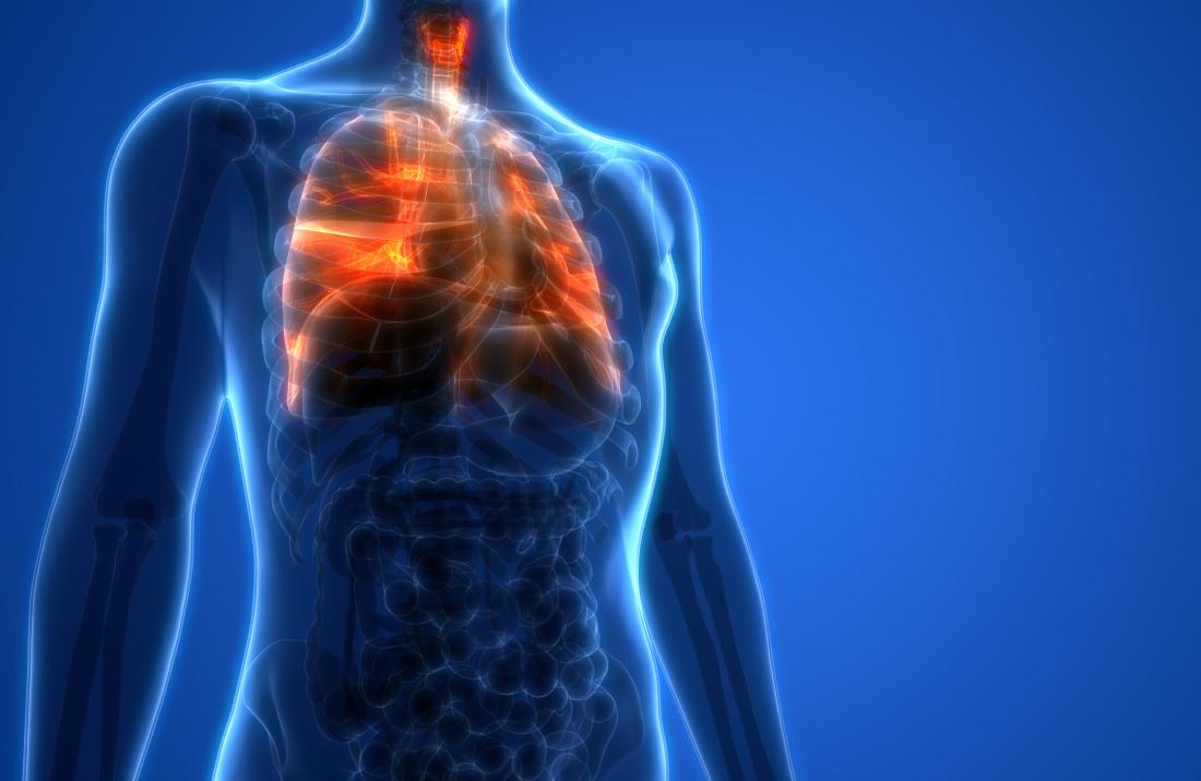 Lung function: What do the lungs do?