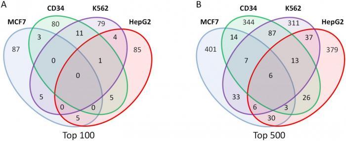Gamma-Retroviruses Preferentially Integrate near Cancer-Associated Genes