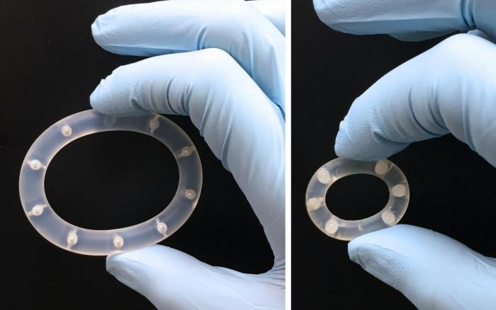 Image of intravaginal ring (IVR) device