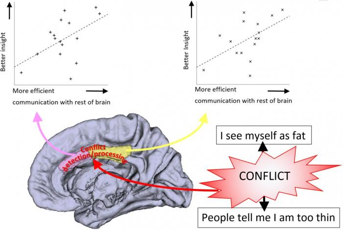 Insight may be impaired in people where connections between areas of the brain involved in conflict detection are abnormal