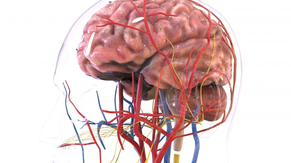 Temporal arteritis (Giant cell arteritis): Symptoms
