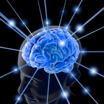 Simple computer model sheds light on sleeping brain