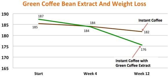 Coffee bean graph