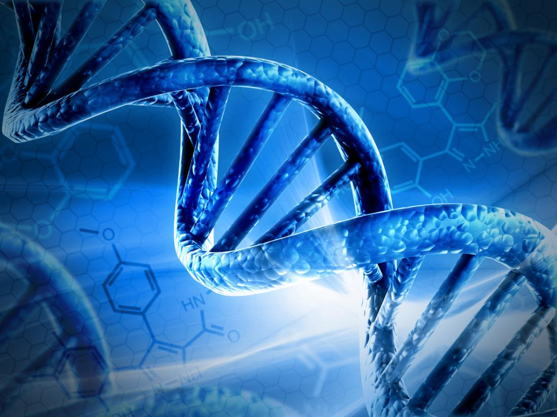 DNA and chromosome
