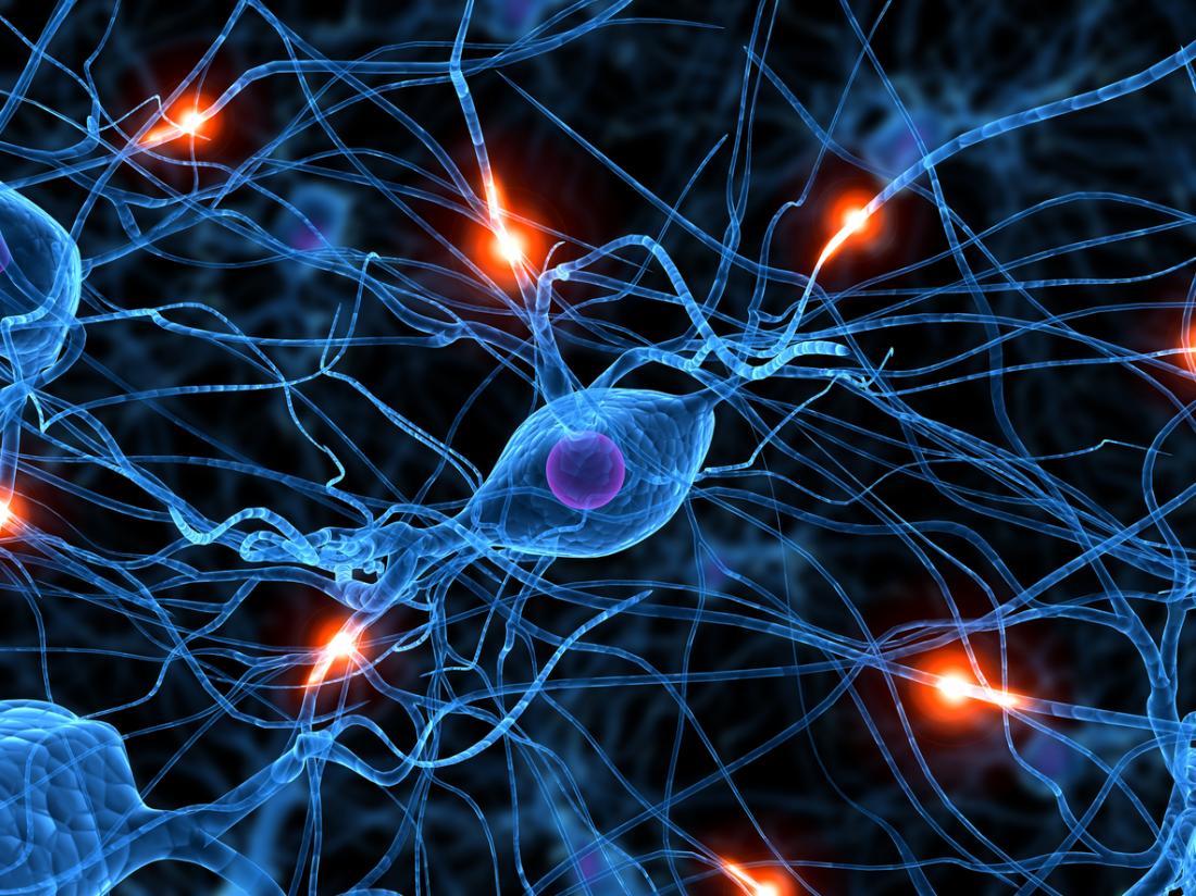New sleep-promoting brain cells identified