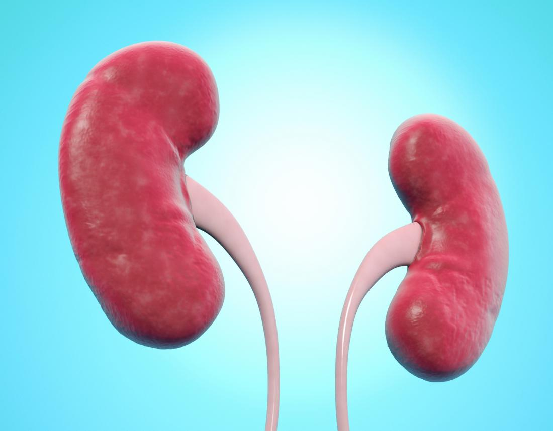 Nephroptosis: Causes, diagnosis, and treatment