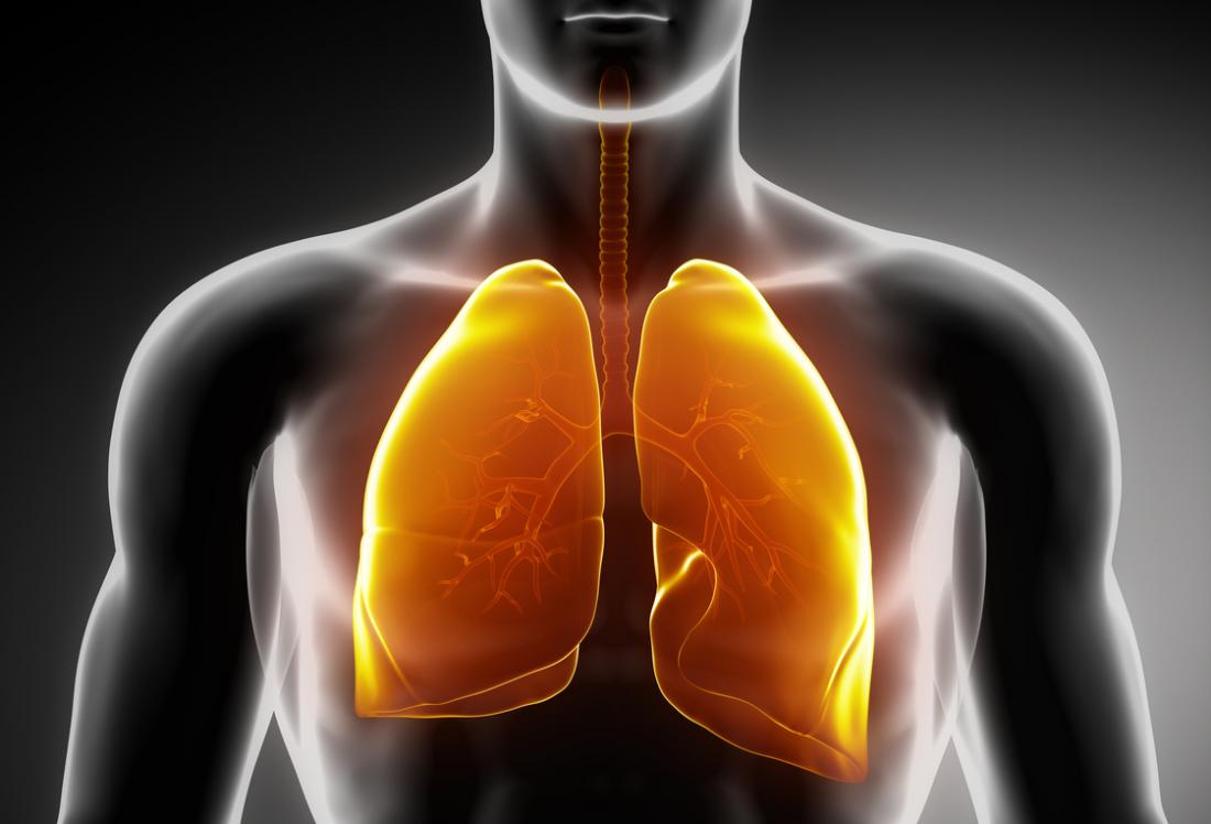 Lung scarring and idiopathic pulmonary fibrosis