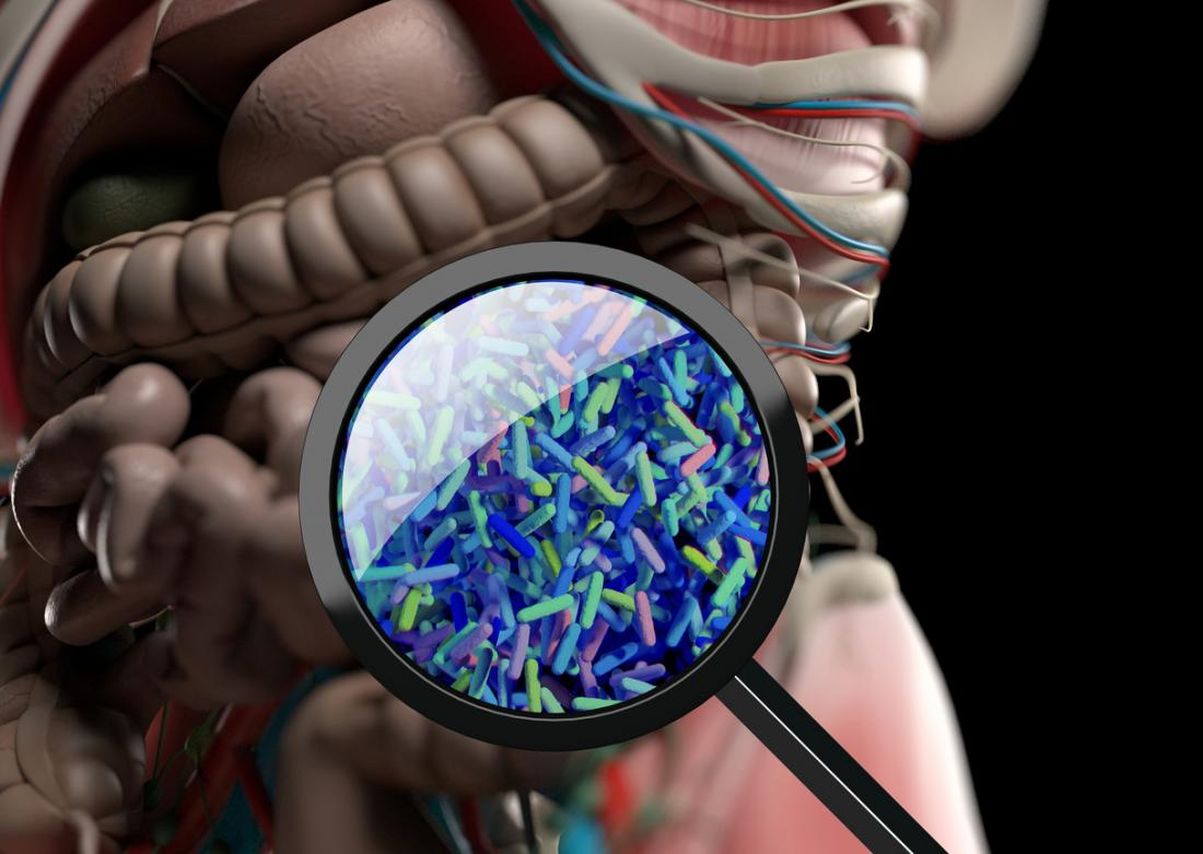 When Gut Bacteria Change Brain Function >> Ptsd Linked To Changes In Gut Bacteria