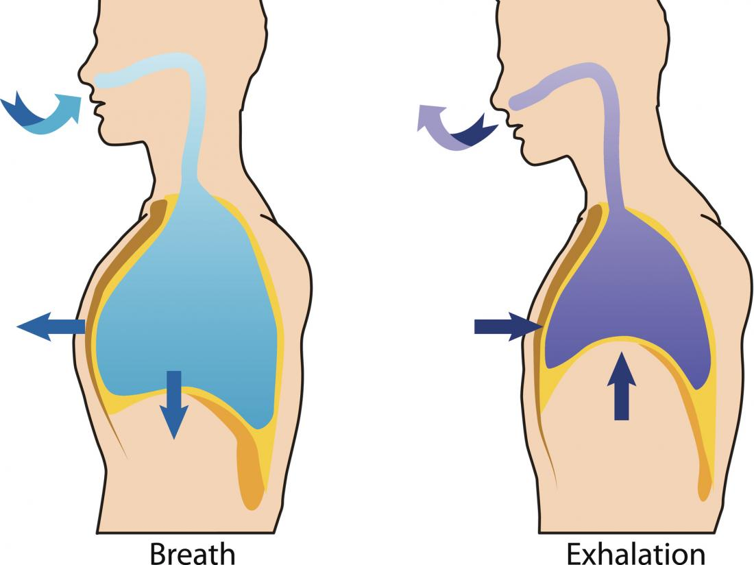 Paradoxical breathing: Symptoms and causes