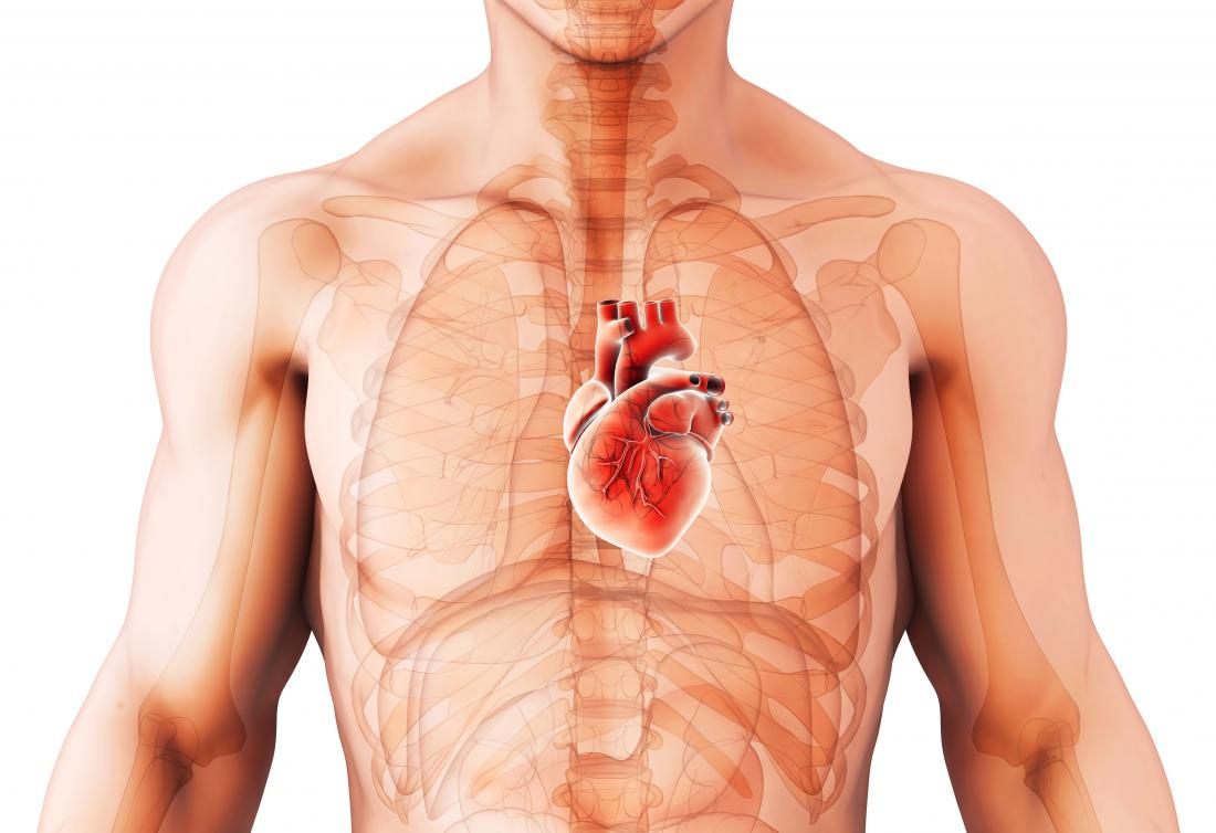 Cardiomegaly: Diagnosis, treatment, and prevention