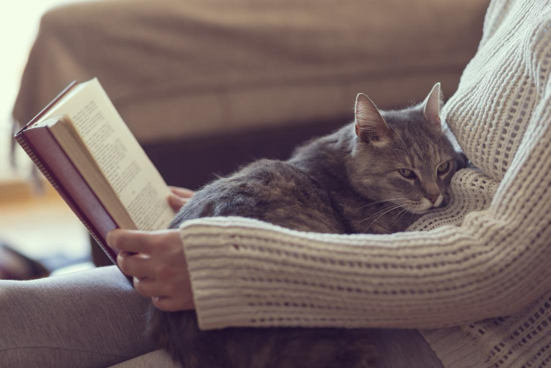 Cat allergies: Causes, symptoms, and treatments