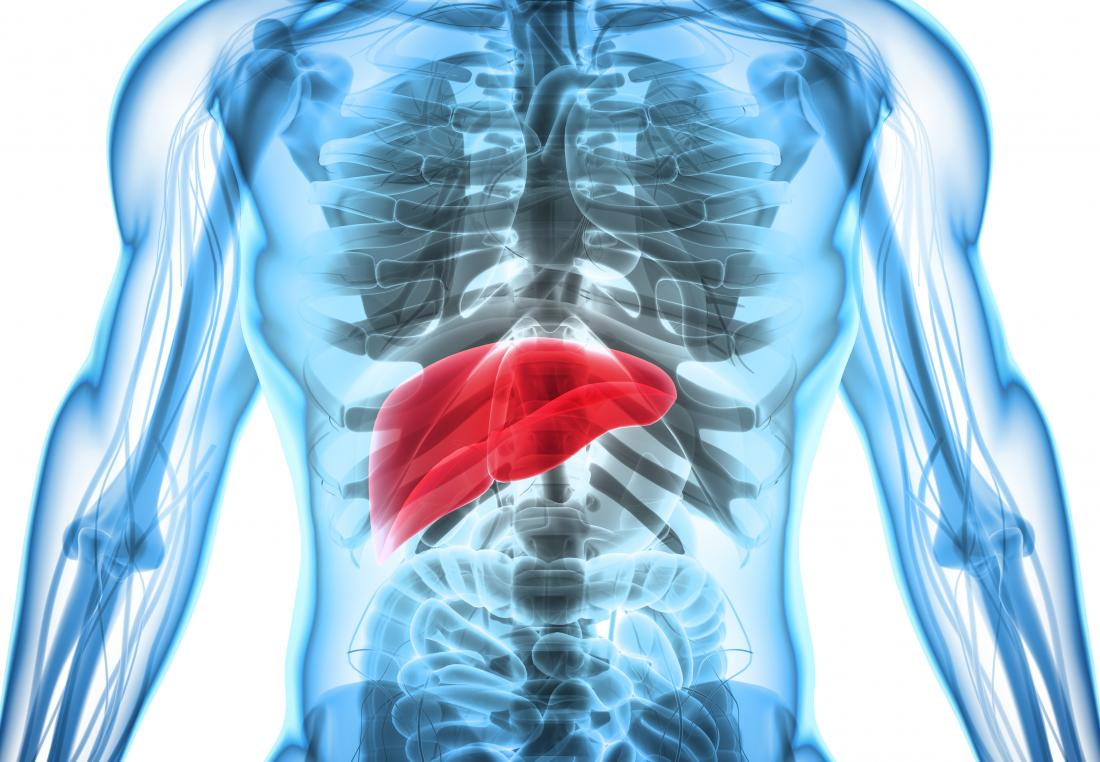 Hepatosplenomegaly Causes Complications And Treatment