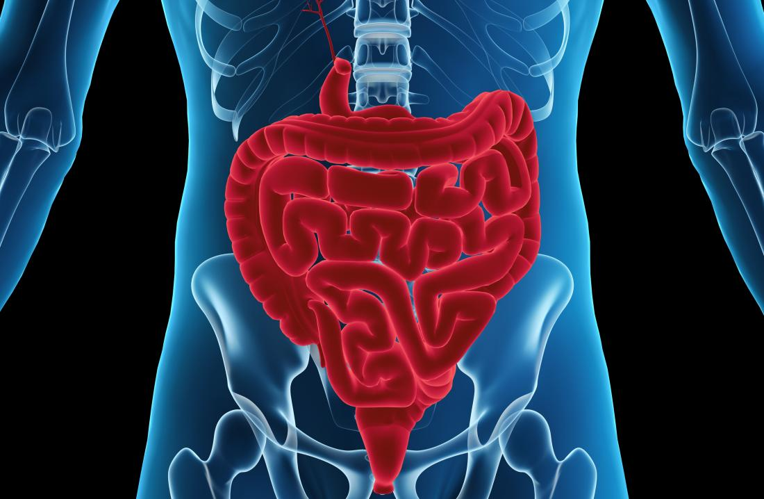 Ileus Symptoms Causes Treatment And Recovery