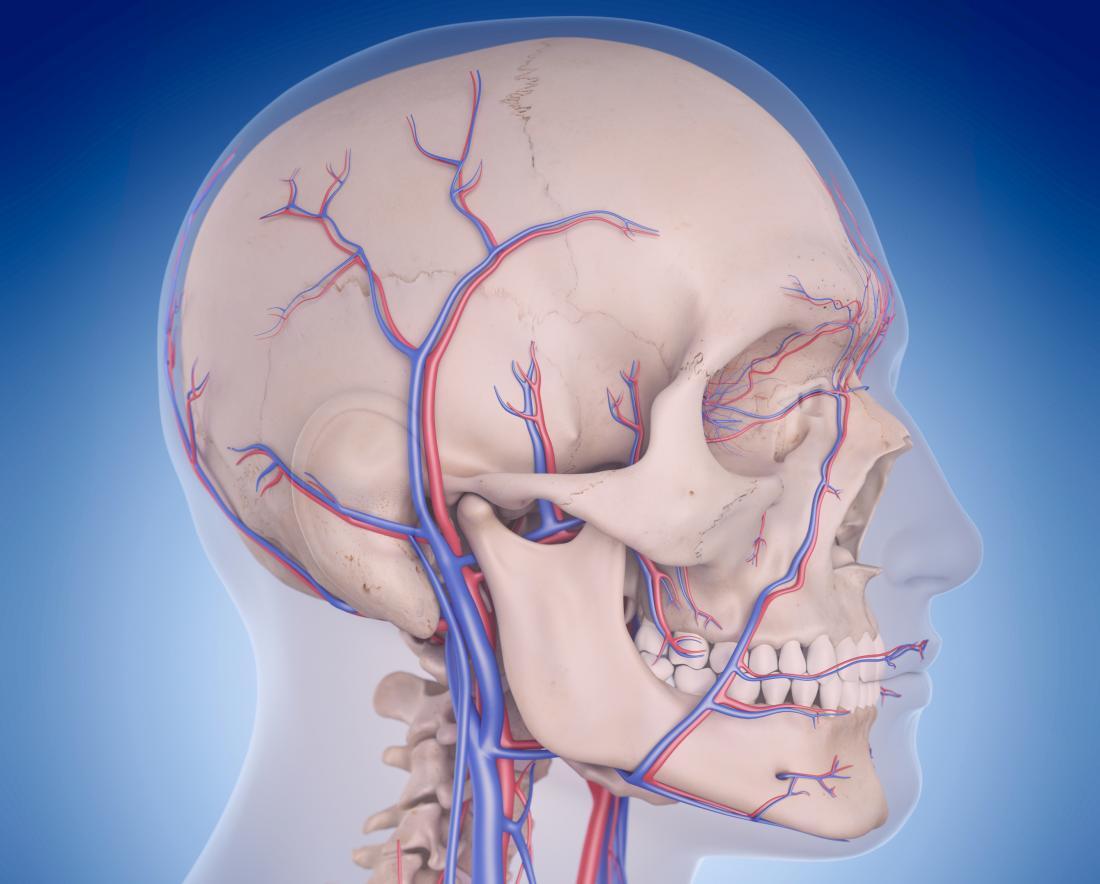 Vertebrobasilar circulatory disorders: Symptoms and causes