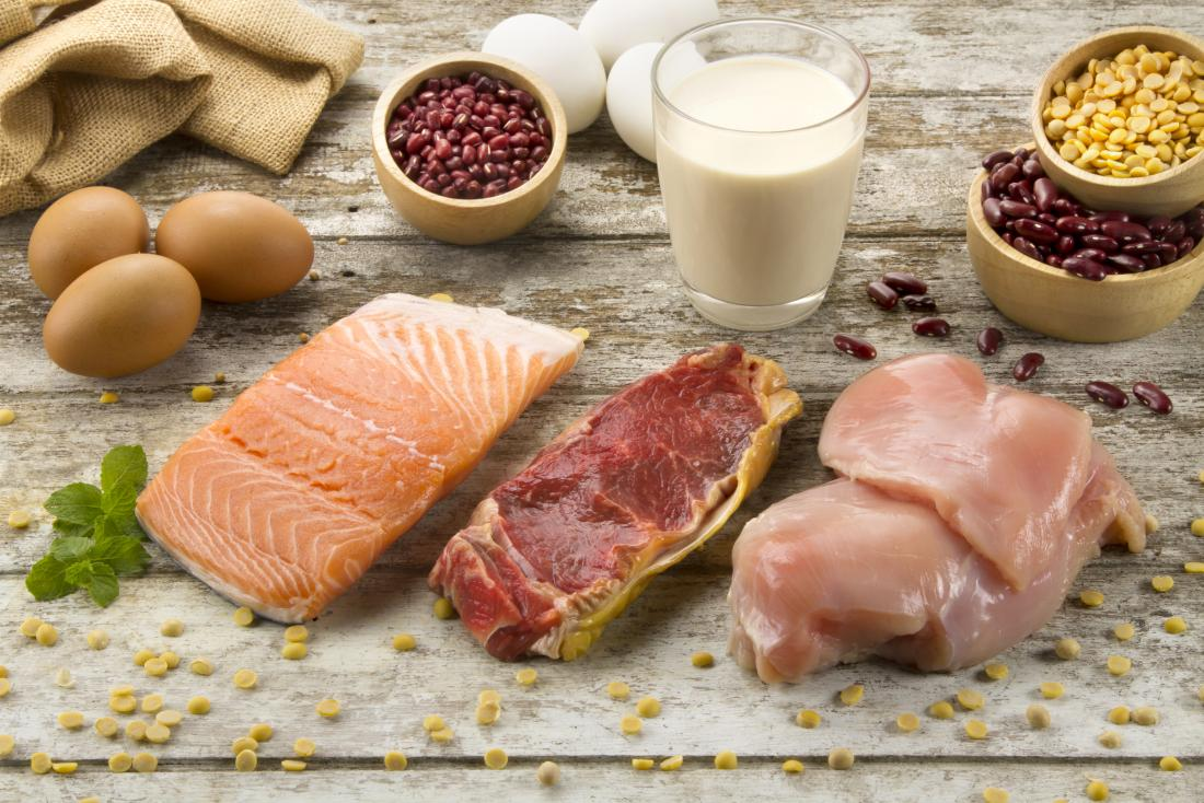 Animal vs  plant protein: What is the difference and which