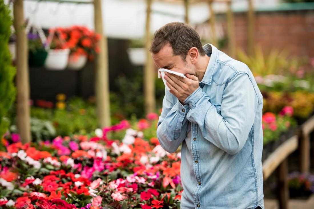 Natural antihistamines: Top 5 remedies for allergies