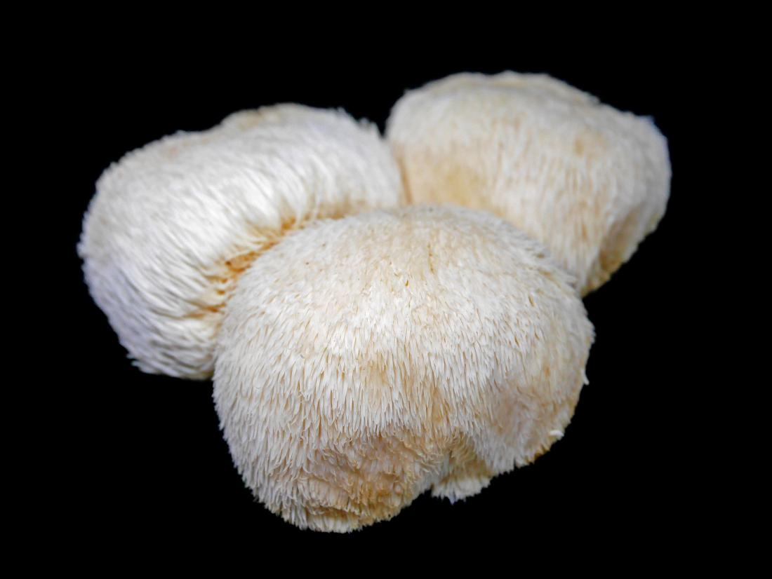 Lion's mane mushrooms: Benefits and side effects