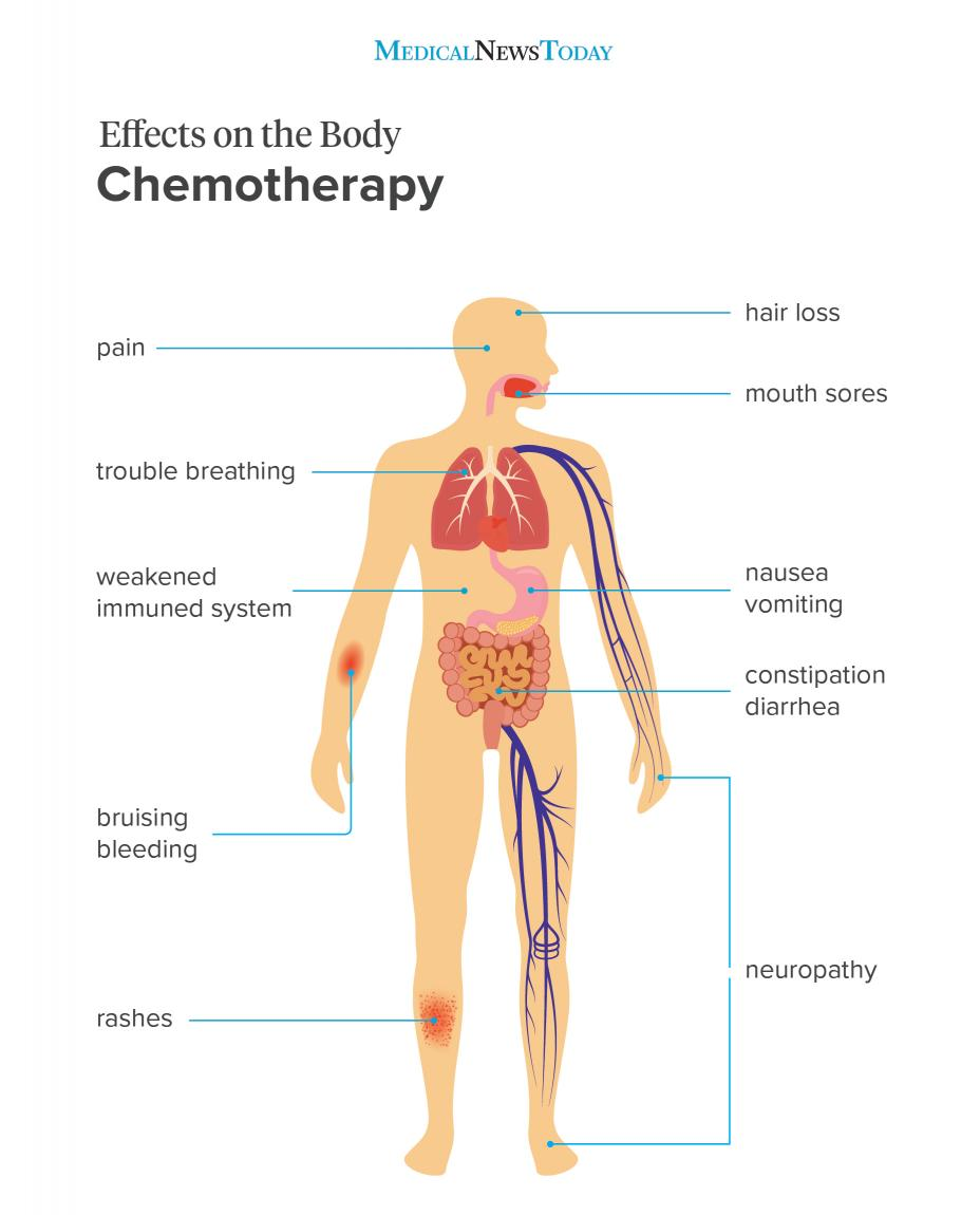 Effects on the body - chemotherapy