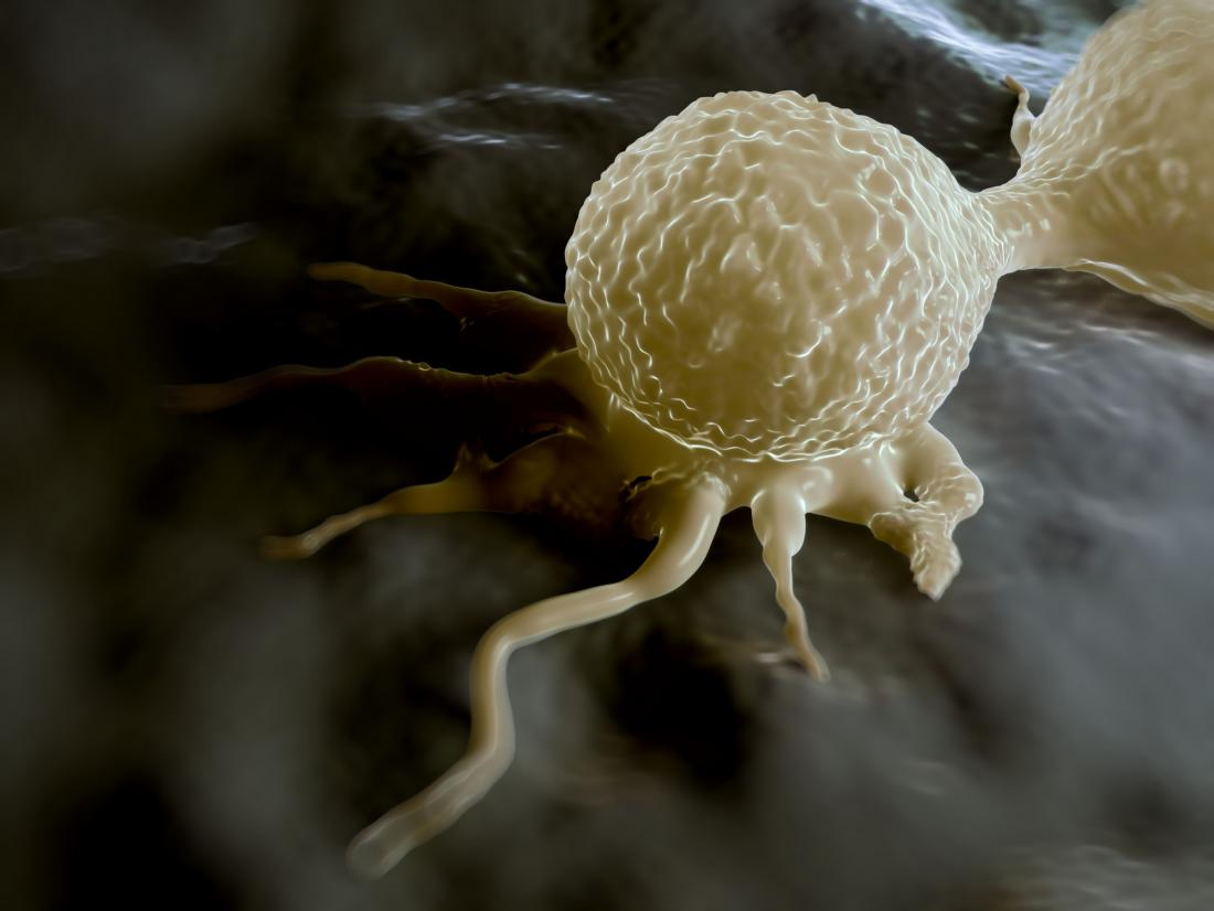 How does a protein's 'evil twin' promote cancer growth?