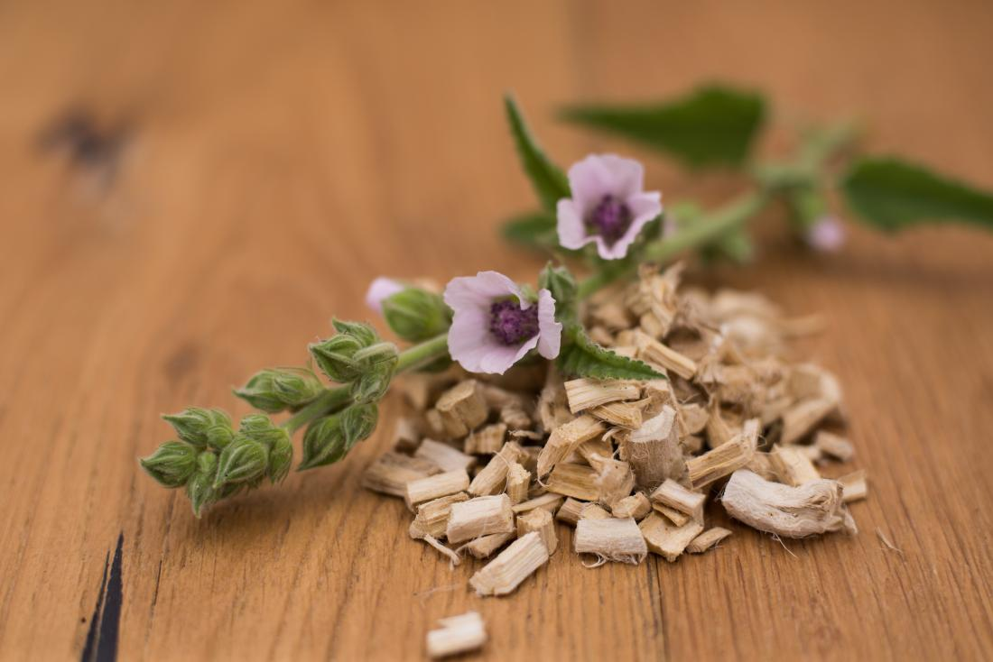 Marshmallow root: Benefits, risks, and uses