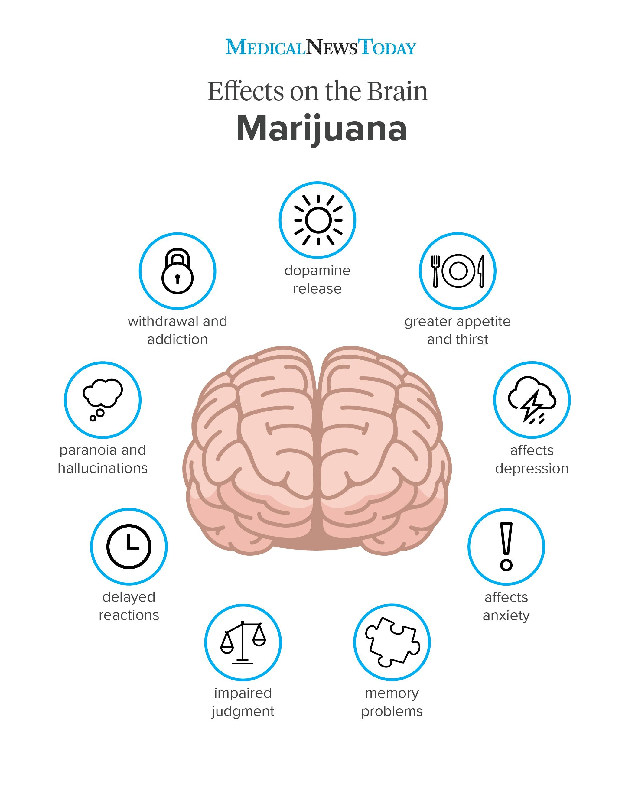 An infographic of a marijuana effects on the brain.