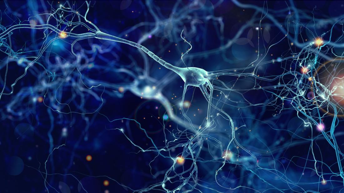 Neuroscientists Reverse Some Autism >> Brain Changes May Explain Why Exercise Relieves Autism In Mice