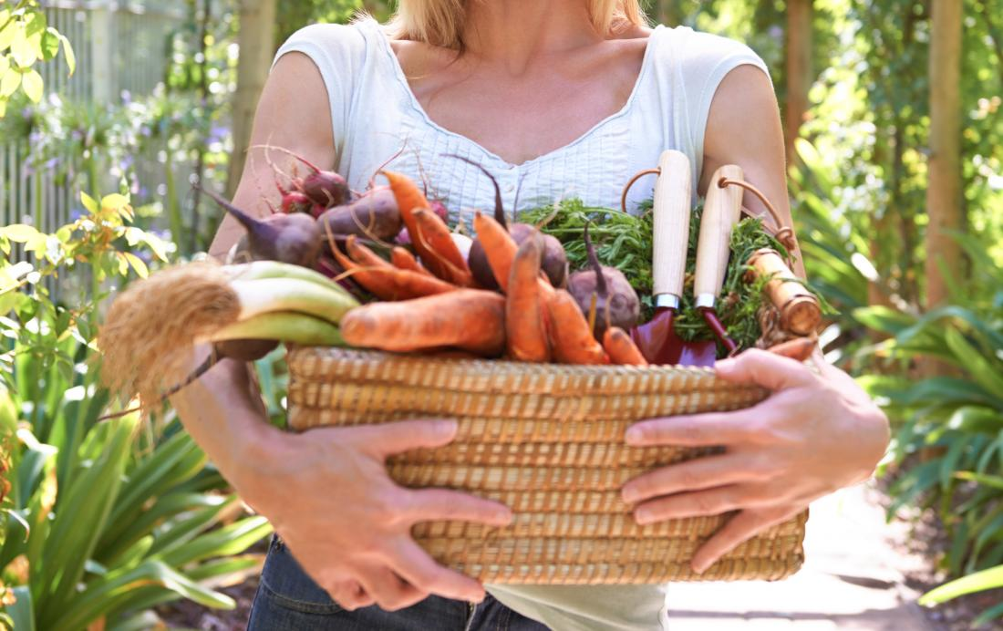 Vegan vs  vegetarian: Differences, benefits, and which is