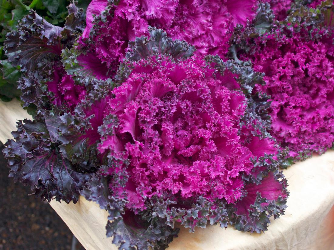 Red kale on a chopping board.