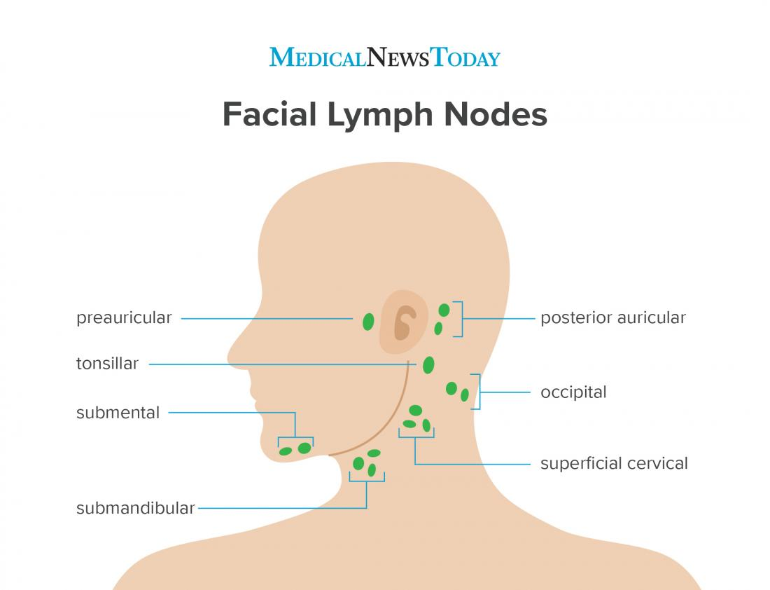 Preauricular lymph nodes: Causes of swelling