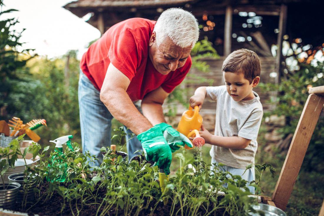 Senior adult gardening outdoors with child