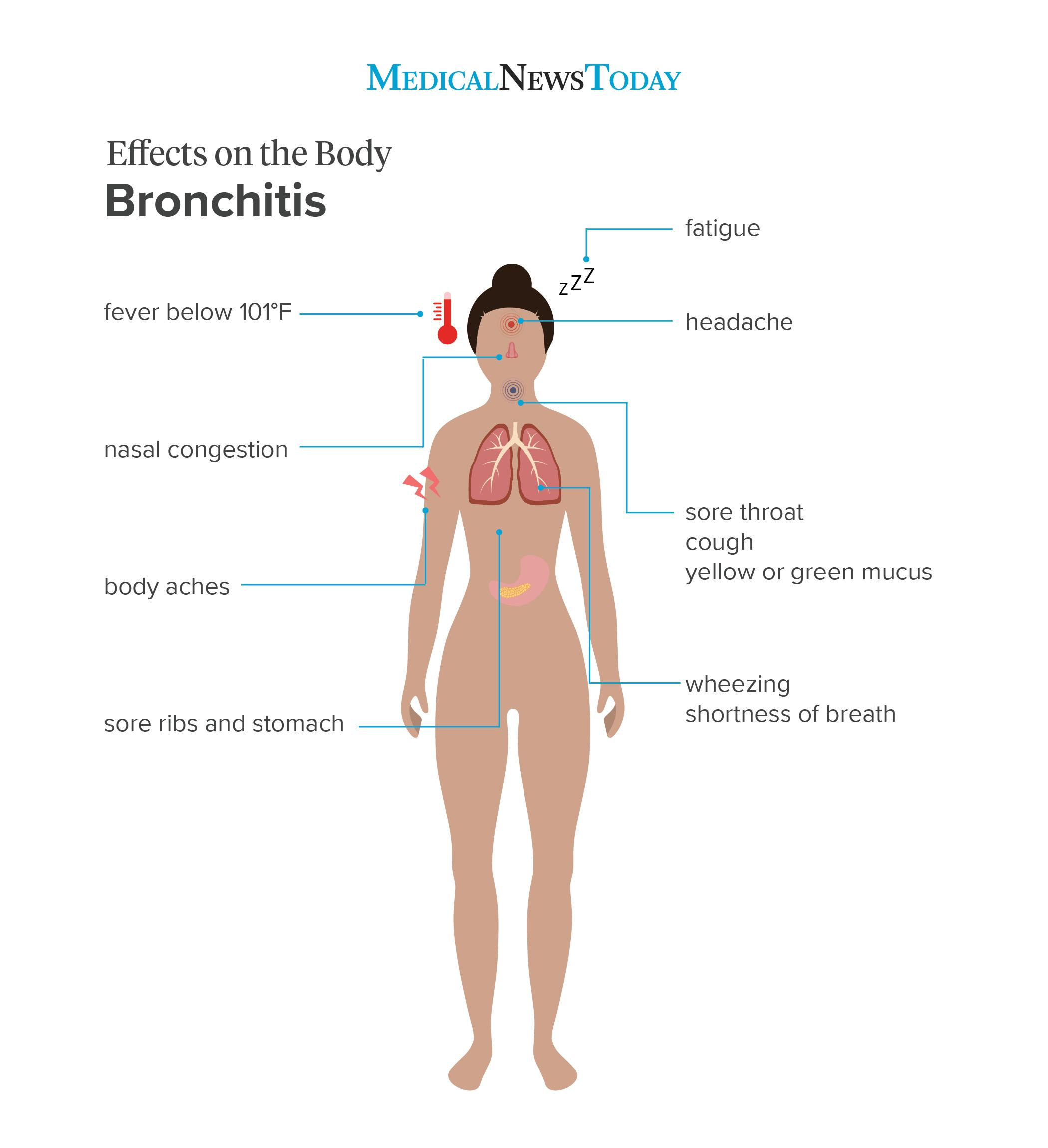 an infographic showing the effects on the body of bronchitis