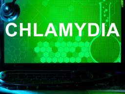 Brilliant Chlamydia Symptoms Treatment And Causes Lamtechconsult Wood Chair Design Ideas Lamtechconsultcom
