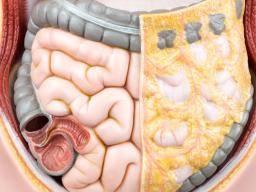 Stem cells and regenerative medicine: Failed promises or