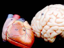 Falling In Love Hits The Brain Like Cocaine Does
