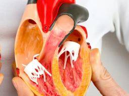 Endocarditis: Symptoms, causes, and treatment