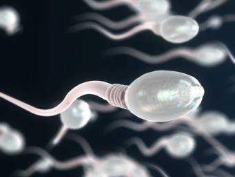 Clomid for men: Does it increase male fertility?
