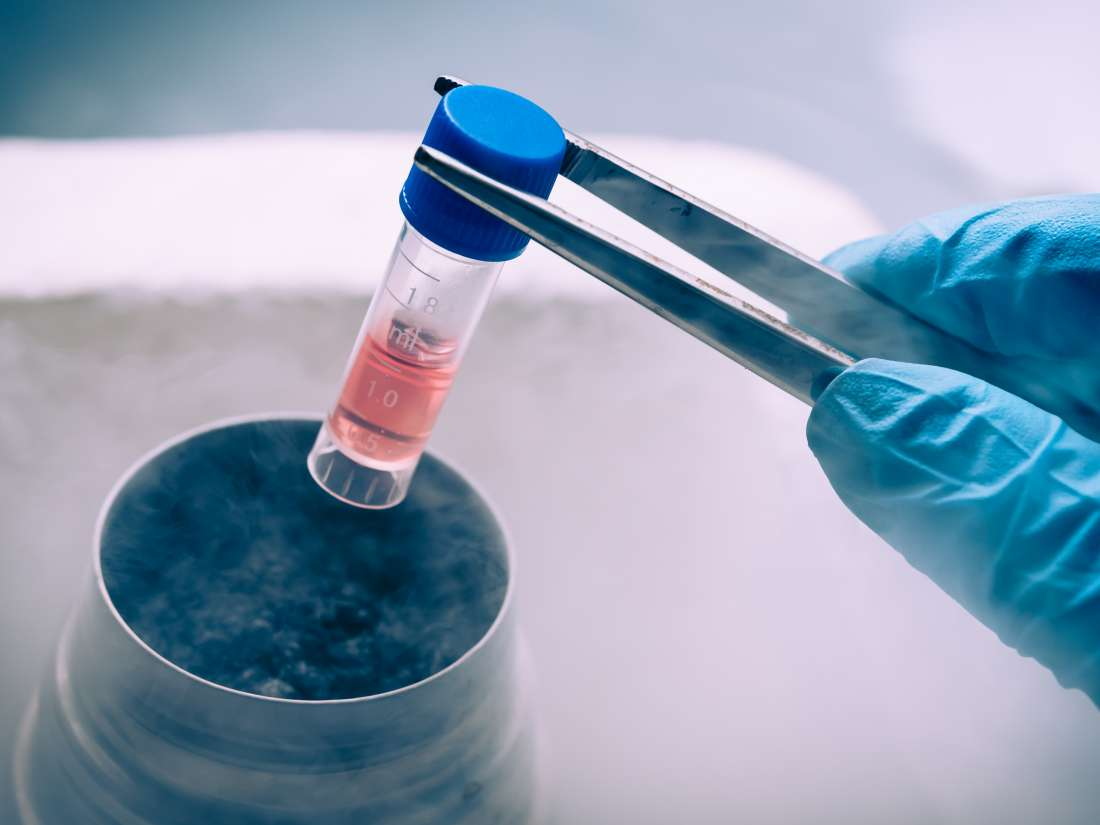 Stem cells: Sources, types, and uses