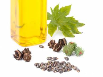 Castor oil: Benefits, use, and side effects