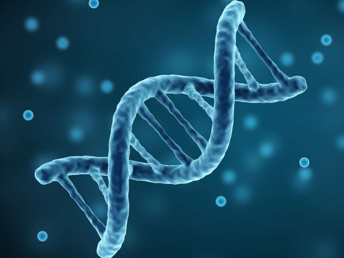 Genes Can Have Up To 80 Percent >> Is Parkinson S Disease Hereditary Genetics And Causes